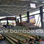 Ready to Export Products Bamboo Panel 03